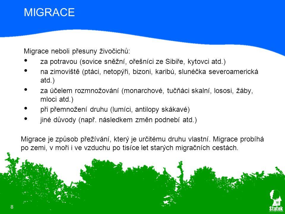 8 MIGRACE Migrace neboli přesuny živočichů: za potravou (sovice sněžní, ořešníci ze Sibiře, kytovci atd.) na zimoviště (ptáci, netopýři, bizoni, karib