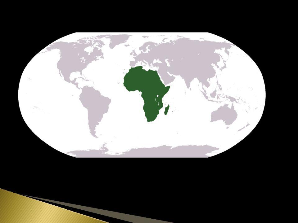  Druhý největší kontinent  Cca 1 mld.