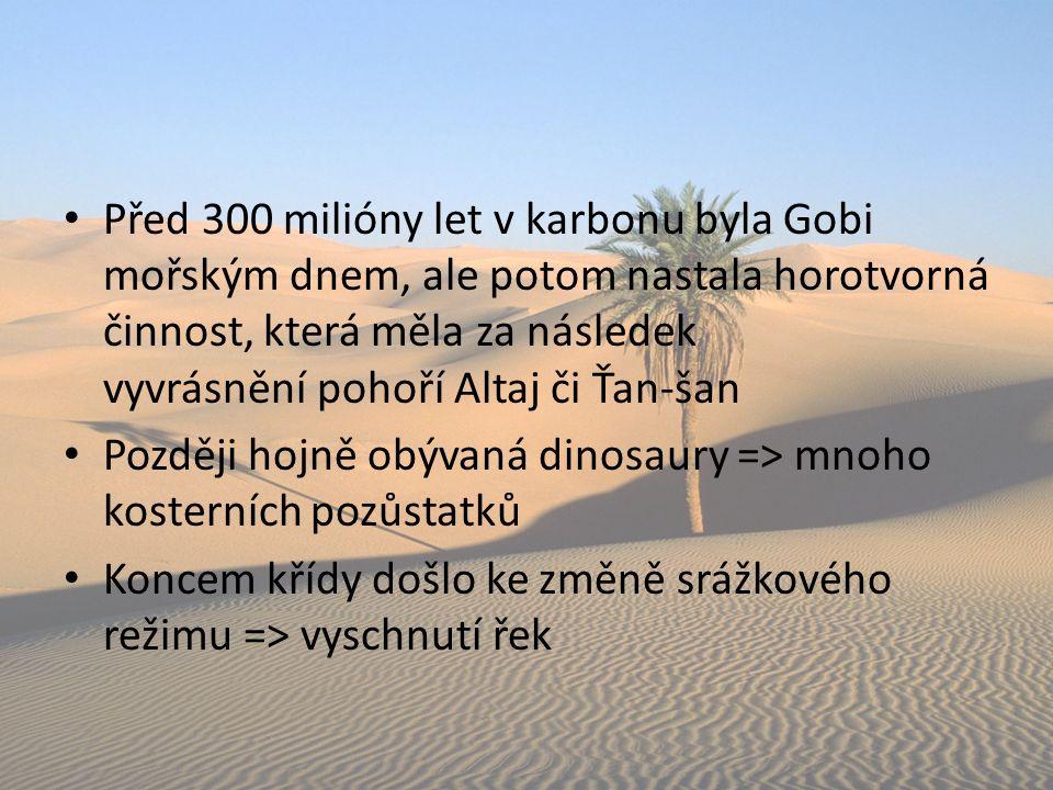 Před 300 milióny let v karbonu byla Gobi mořským dnem, ale potom nastala horotvorná činnost, která měla za následek vyvrásnění pohoří Altaj či Ťan-šan Později hojně obývaná dinosaury => mnoho kosterních pozůstatků Koncem křídy došlo ke změně srážkového režimu => vyschnutí řek