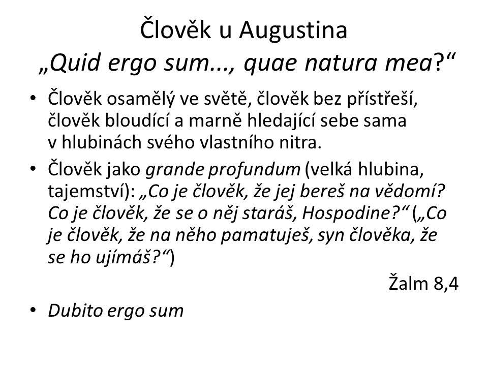 """Člověk u Augustina """"Quid ergo sum..., quae natura mea Člověk osamělý ve světě, člověk bez přístřeší, člověk bloudící a marně hledající sebe sama v hlubinách svého vlastního nitra."""