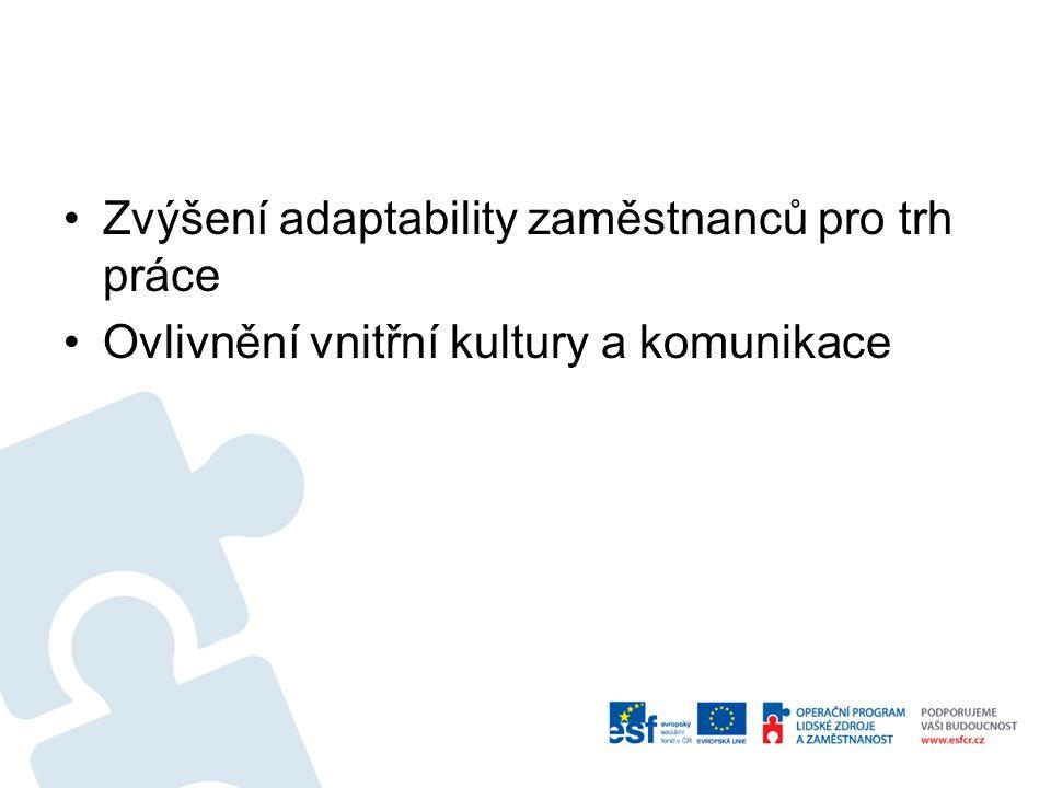 Zvýšení adaptability zaměstnanců pro trh práce Ovlivnění vnitřní kultury a komunikace