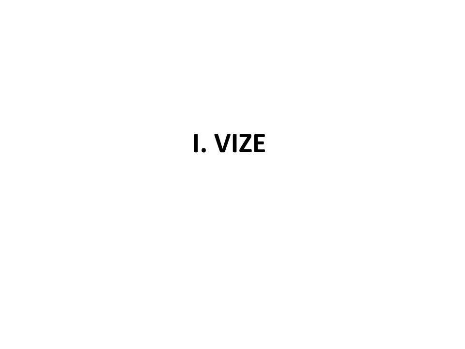 I. VIZE