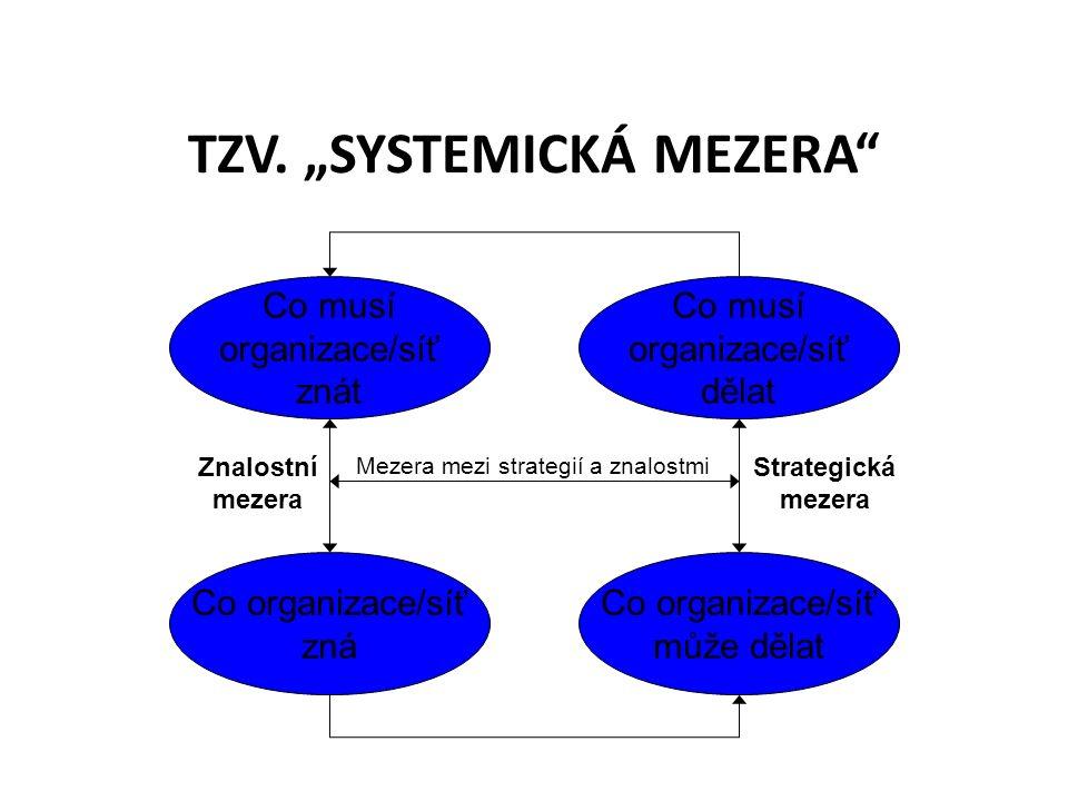 """TZV. """"SYSTEMICKÁ MEZERA"""" Co musí organizace/síť znát Co organizace/síť zná Co musí organizace/síť dělat Co organizace/síť může dělat Znalostní mezera"""