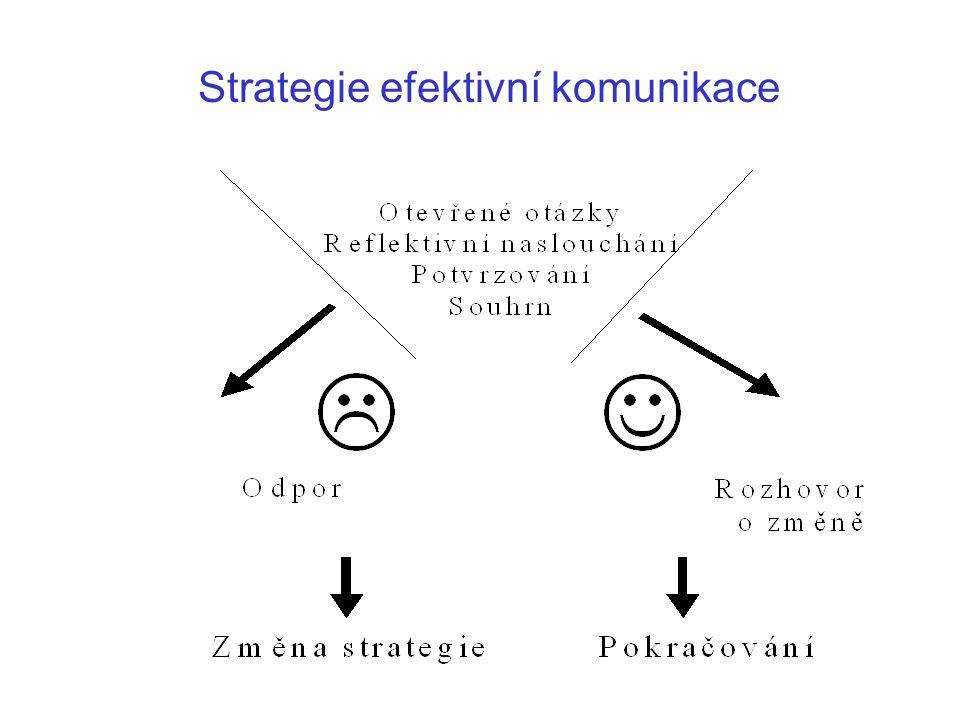 Strategie efektivní komunikace