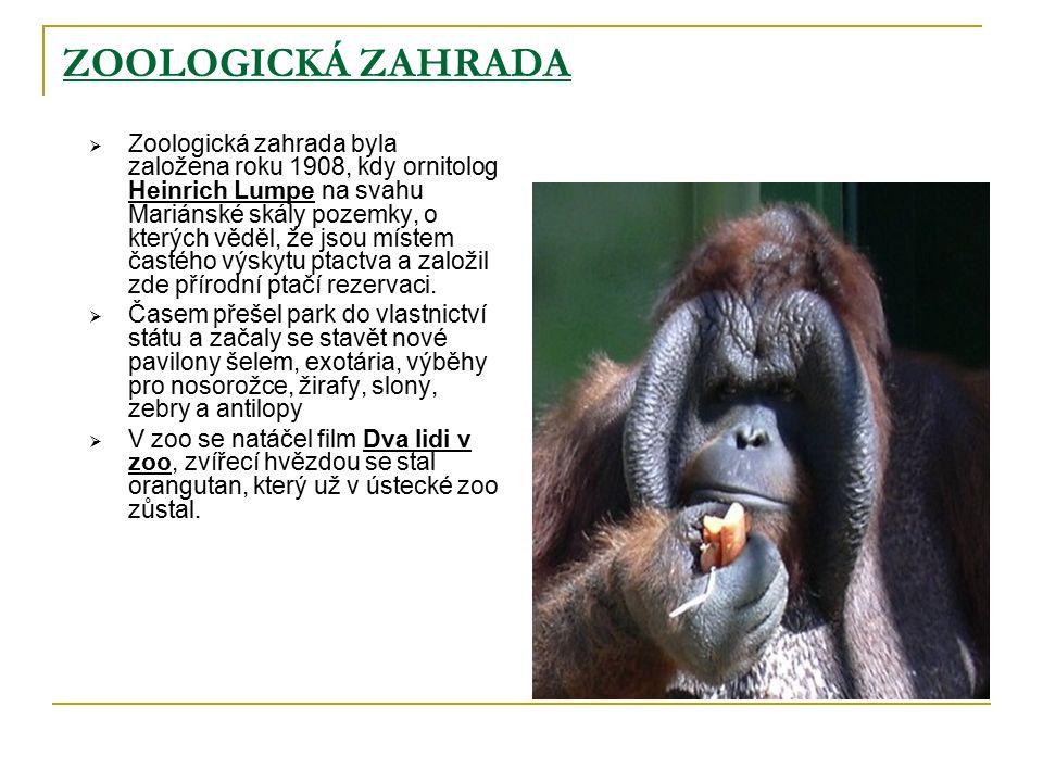 ZOOLOGICKÁ ZAHRADA  Zoologická zahrada byla založena roku 1908, kdy ornitolog Heinrich Lumpe na svahu Mariánské skály pozemky, o kterých věděl, že jsou místem častého výskytu ptactva a založil zde přírodní ptačí rezervaci.