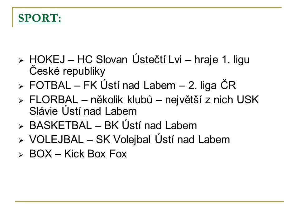 SPORT:  HOKEJ – HC Slovan Ústečtí Lvi – hraje 1.
