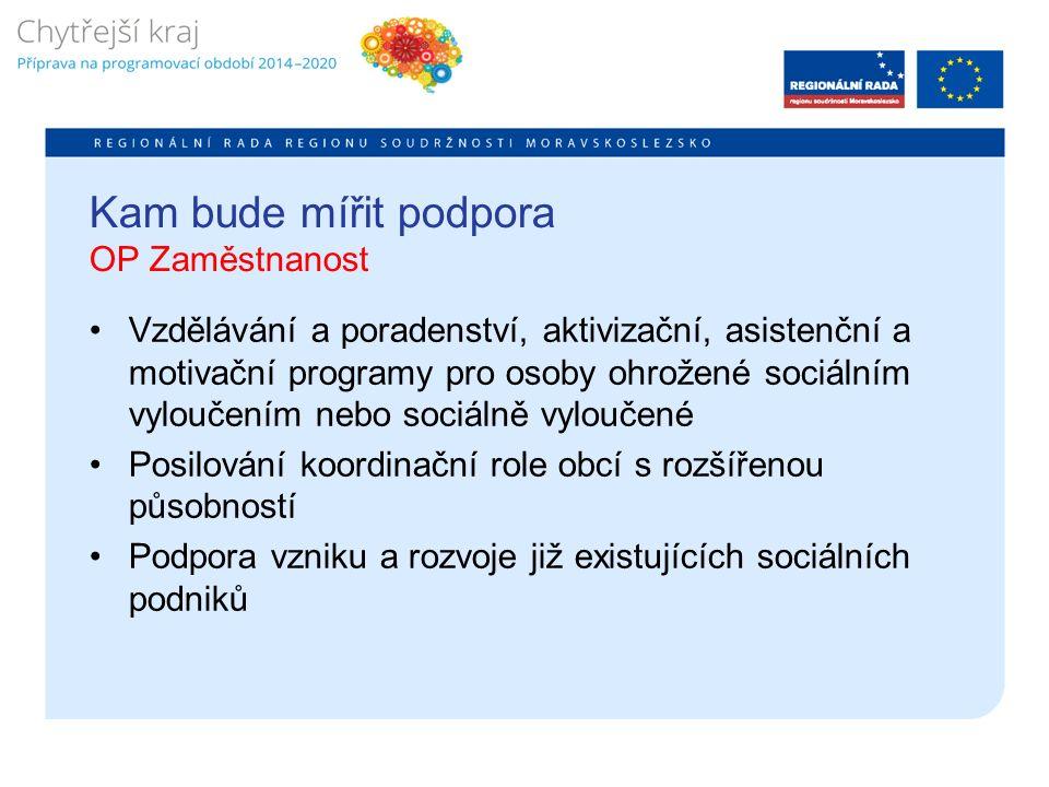 Kam bude mířit podpora OP Zaměstnanost Vzdělávání a poradenství, aktivizační, asistenční a motivační programy pro osoby ohrožené sociálním vyloučením nebo sociálně vyloučené Posilování koordinační role obcí s rozšířenou působností Podpora vzniku a rozvoje již existujících sociálních podniků