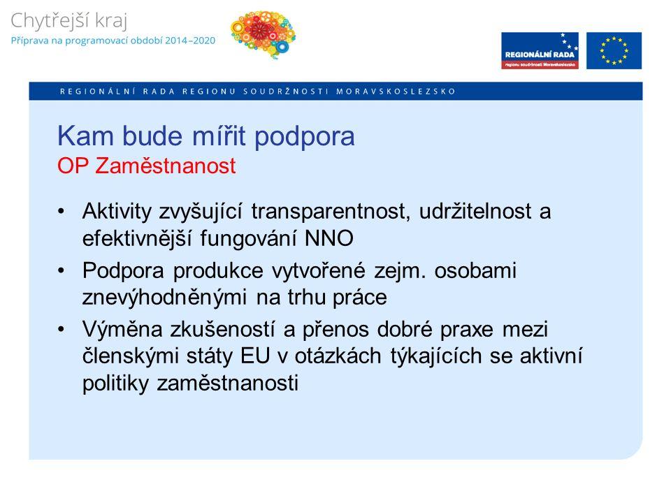 Kam bude mířit podpora OP Zaměstnanost Aktivity zvyšující transparentnost, udržitelnost a efektivnější fungování NNO Podpora produkce vytvořené zejm.