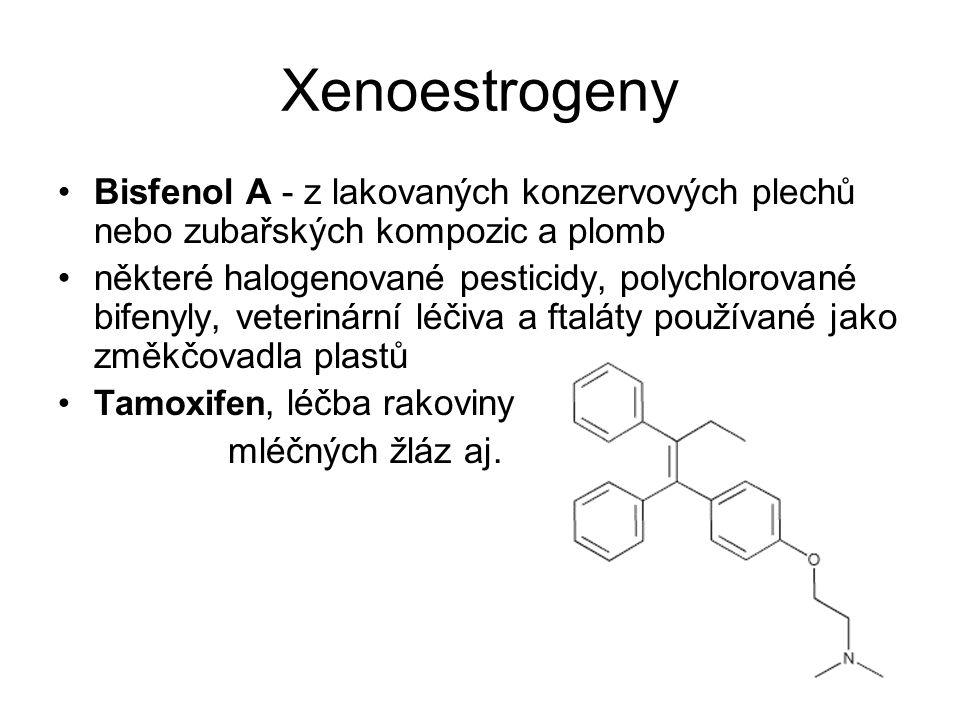 Xenoestrogeny Bisfenol A - z lakovaných konzervových plechů nebo zubařských kompozic a plomb některé halogenované pesticidy, polychlorované bifenyly,