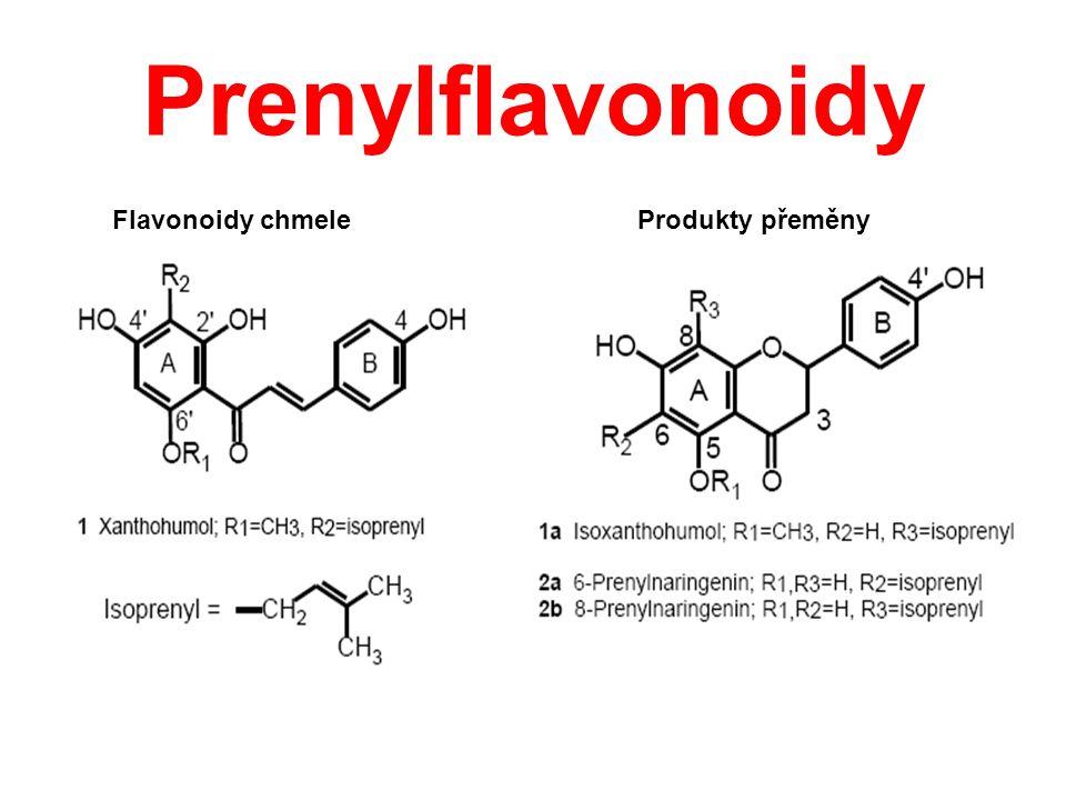 Prenylflavonoidy Flavonoidy chmele Produkty přeměny