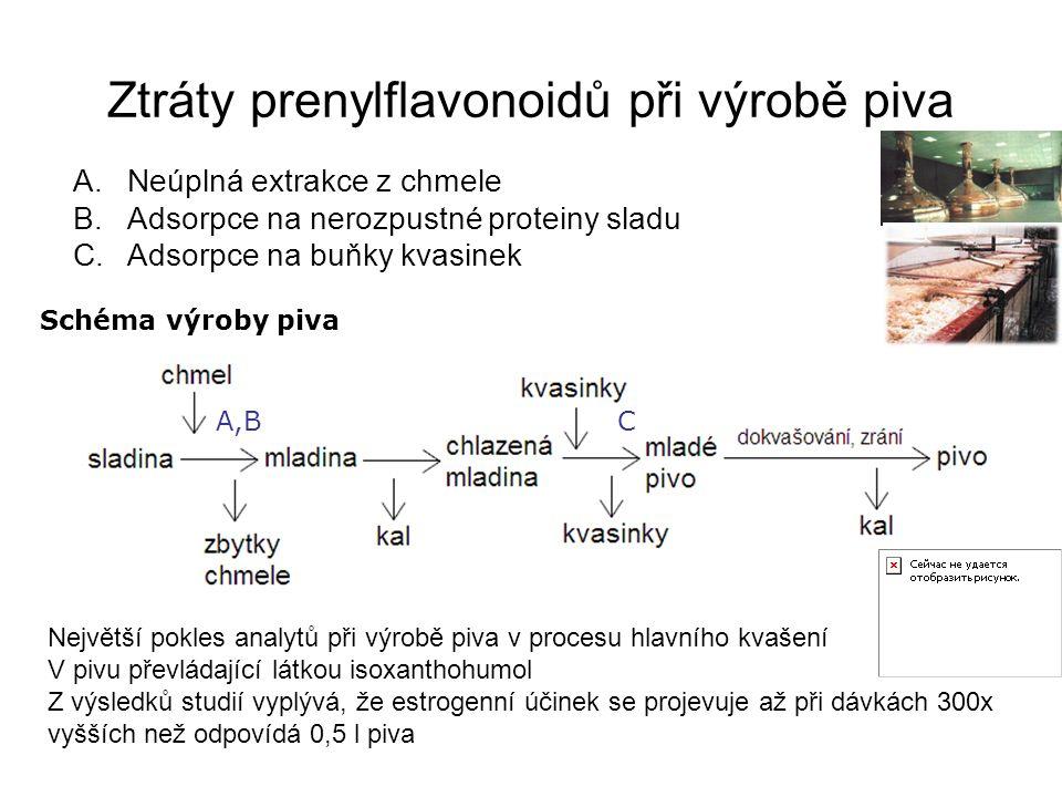 Ztráty prenylflavonoidů při výrobě piva A.Neúplná extrakce z chmele B.Adsorpce na nerozpustné proteiny sladu C.Adsorpce na buňky kvasinek A,BC Schéma