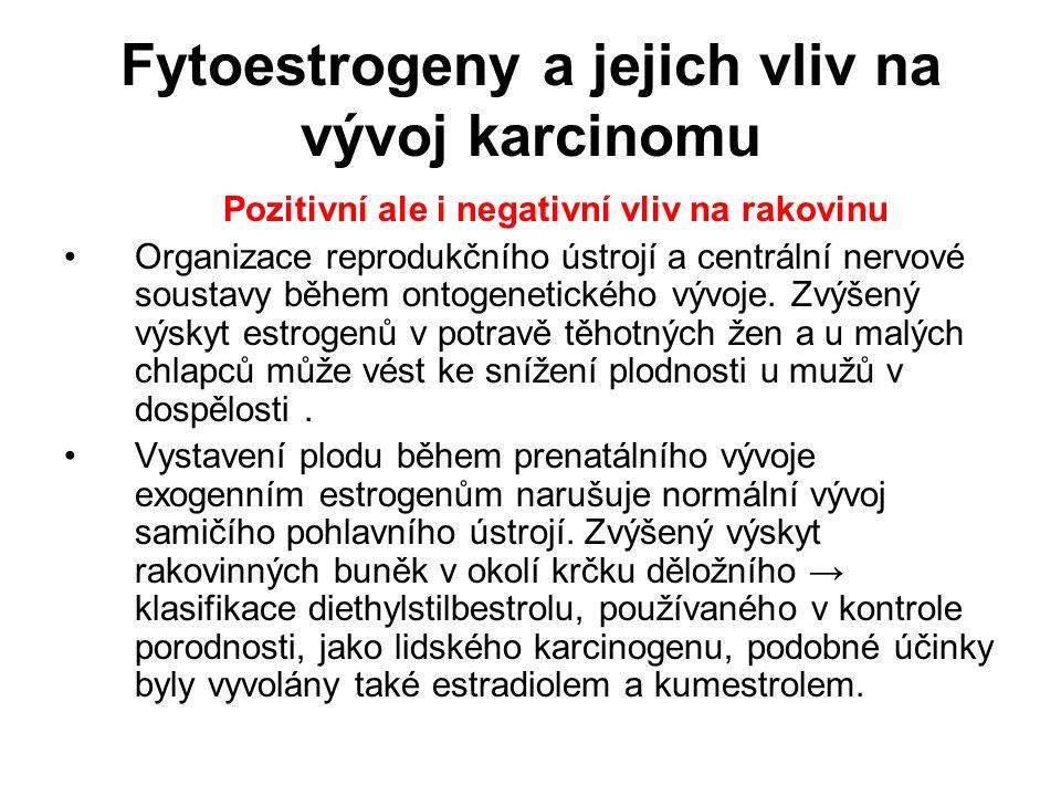 Fytoestrogeny a jejich vliv na vývoj karcinomu Pozitivní ale i negativní vliv na rakovinu Organizace reprodukčního ústrojí a centrální nervové soustav