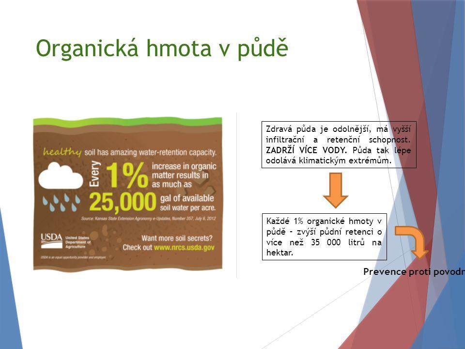 Organická hmota v půdě Zdravá půda je odolnější, má vyšší infiltrační a retenční schopnost.