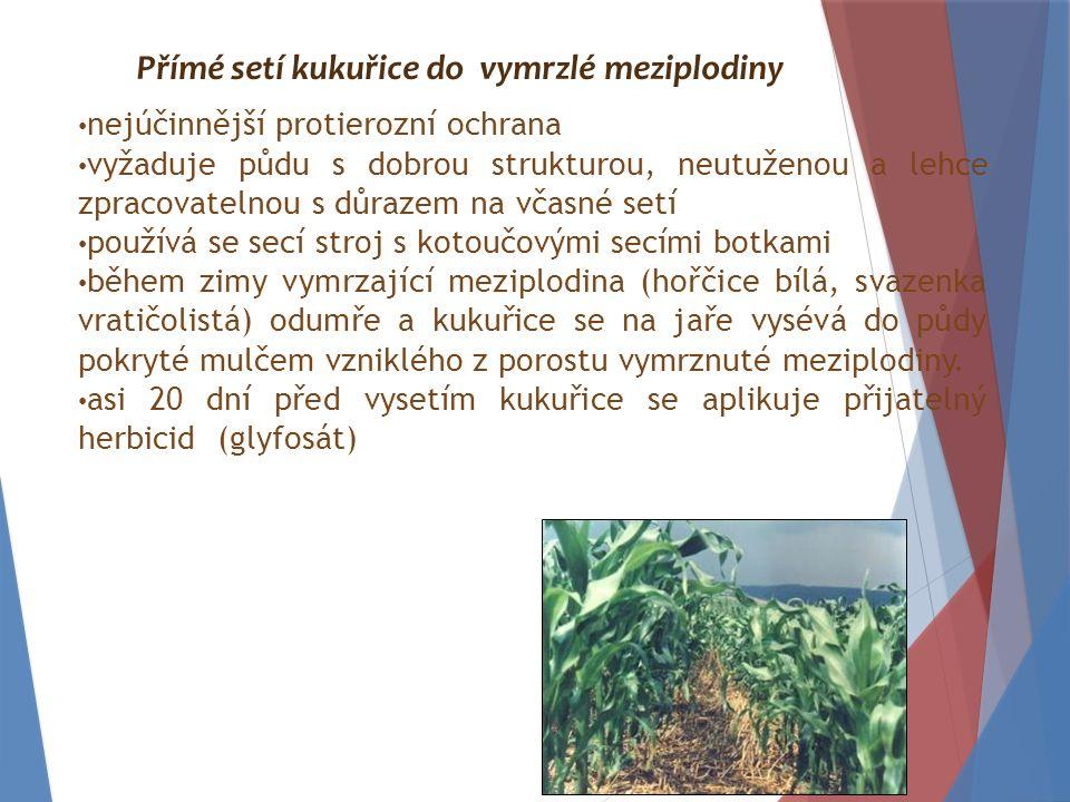 nejúčinnější protierozní ochrana vyžaduje půdu s dobrou strukturou, neutuženou a lehce zpracovatelnou s důrazem na včasné setí používá se secí stroj s kotoučovými secími botkami během zimy vymrzající meziplodina (hořčice bílá, svazenka vratičolistá) odumře a kukuřice se na jaře vysévá do půdy pokryté mulčem vzniklého z porostu vymrznuté meziplodiny.