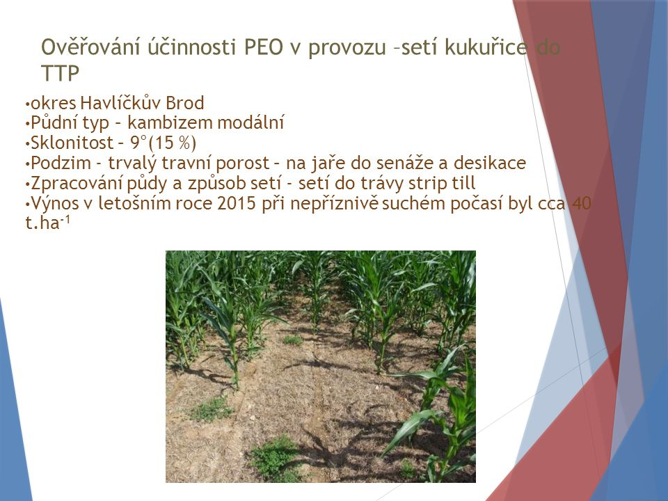 Ověřování účinnosti PEO v provozu –setí kukuřice do TTP okres Havlíčkův Brod Půdní typ – kambizem modální Sklonitost – 9°(15 %) Podzim - trvalý travní porost – na jaře do senáže a desikace Zpracování půdy a způsob setí - setí do trávy strip till Výnos v letošním roce 2015 při nepříznivě suchém počasí byl cca 40 t.ha -1