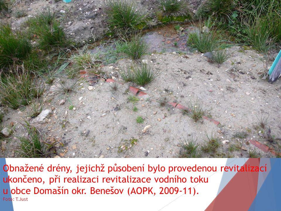Obnažené drény, jejichž působení bylo provedenou revitalizací ukončeno, při realizaci revitalizace vodního toku u obce Domašín okr.