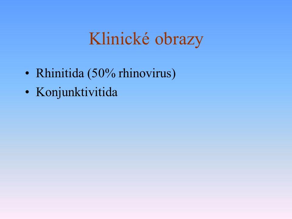 Klinické obrazy Rhinitida (50% rhinovirus) Konjunktivitida