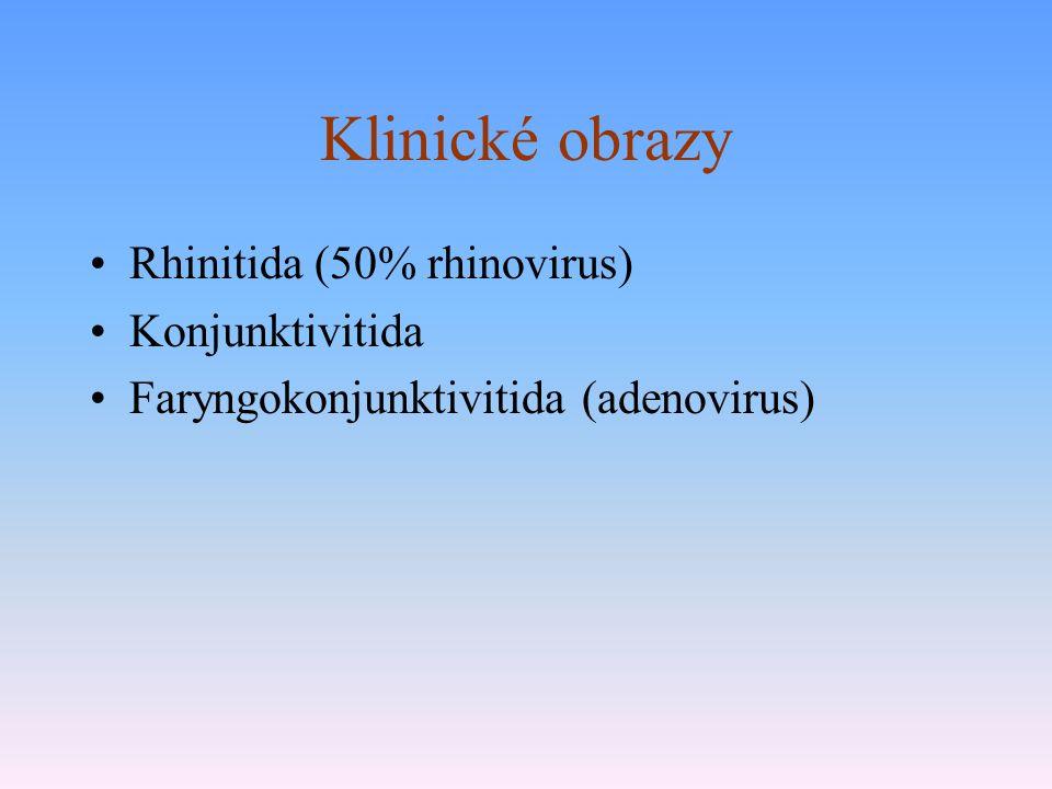 Klinické obrazy Rhinitida (50% rhinovirus) Konjunktivitida Faryngokonjunktivitida (adenovirus)