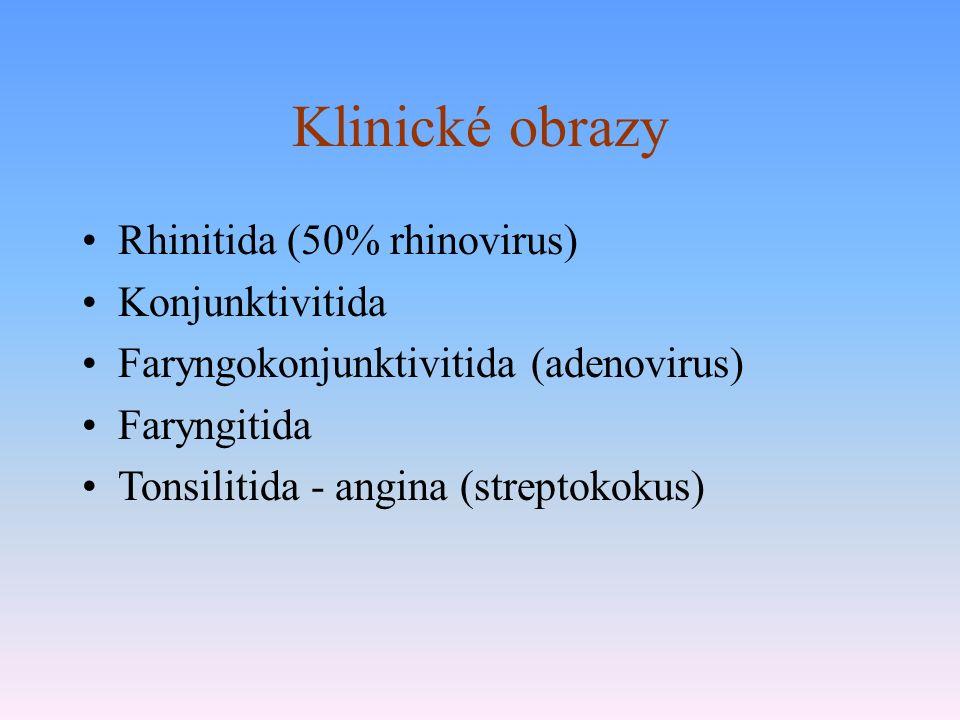 Klinické obrazy Rhinitida (50% rhinovirus) Konjunktivitida Faryngokonjunktivitida (adenovirus) Faryngitida Tonsilitida - angina (streptokokus)