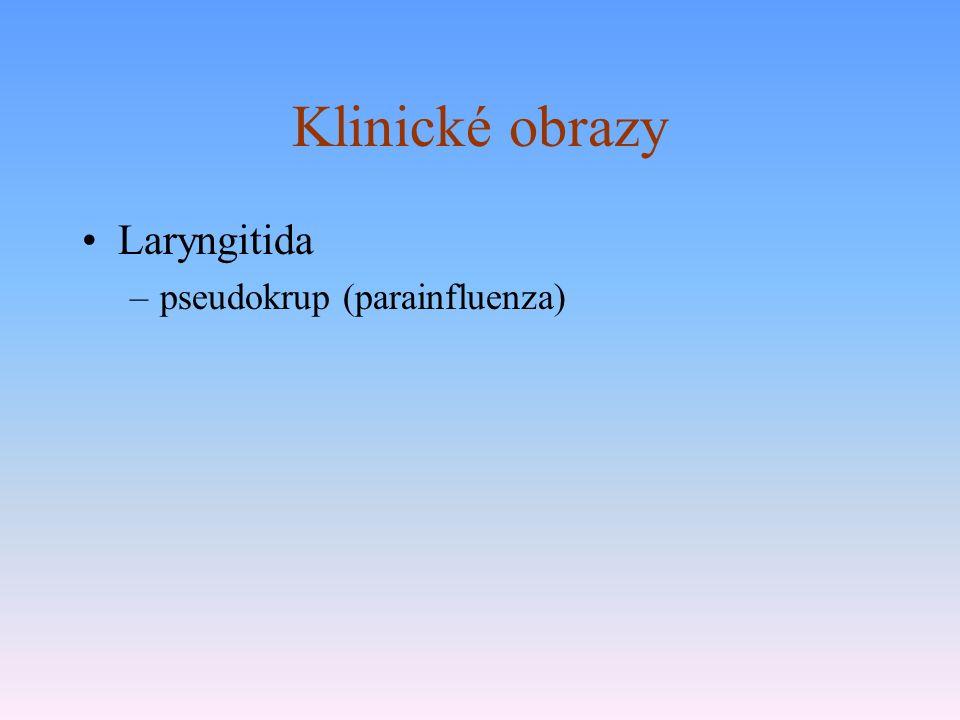 Klinické obrazy Laryngitida –pseudokrup (parainfluenza)