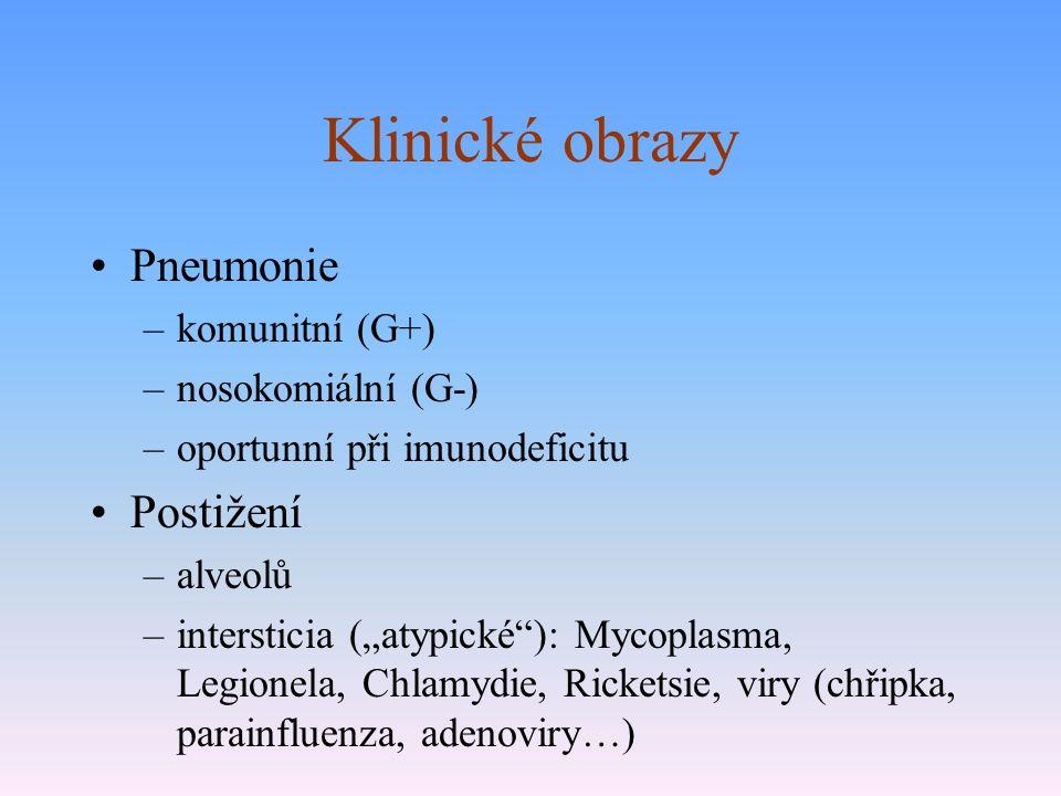 """Klinické obrazy Pneumonie –komunitní (G+) –nosokomiální (G-) –oportunní při imunodeficitu Postižení –alveolů –intersticia (""""atypické ): Mycoplasma, Legionela, Chlamydie, Ricketsie, viry (chřipka, parainfluenza, adenoviry…)"""