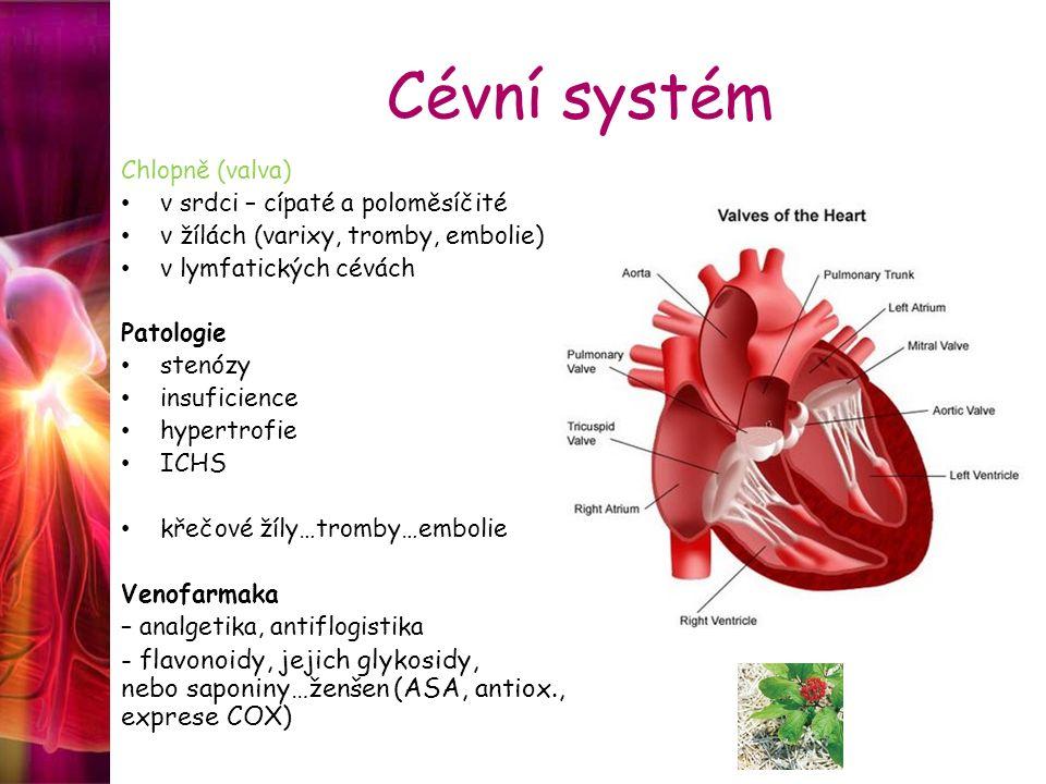 Cévní systém Chlopně (valva) v srdci – cípaté a poloměsíčité v žílách (varixy, tromby, embolie) v lymfatických cévách Patologie stenózy insuficience h
