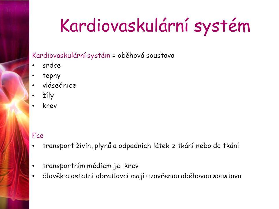 Kardiovaskulární systém Kardiovaskulární systém = oběhová soustava srdce tepny vlásečnice žíly krev Fce transport živin, plynů a odpadních látek z tká