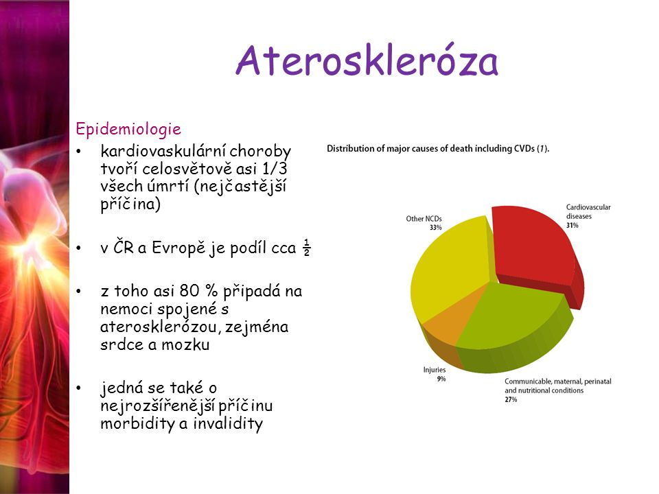 Ateroskleróza Epidemiologie kardiovaskulární choroby tvoří celosvětově asi 1/3 všech úmrtí (nejčastější příčina) v ČR a Evropě je podíl cca ½ z toho a