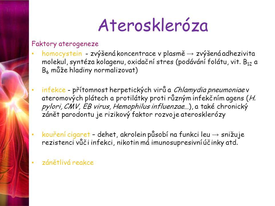 Ateroskleróza Faktory aterogeneze homocystein - zvýšená koncentrace v plasmě → zvýšená adhezivita molekul, syntéza kolagenu, oxidační stres (podávání