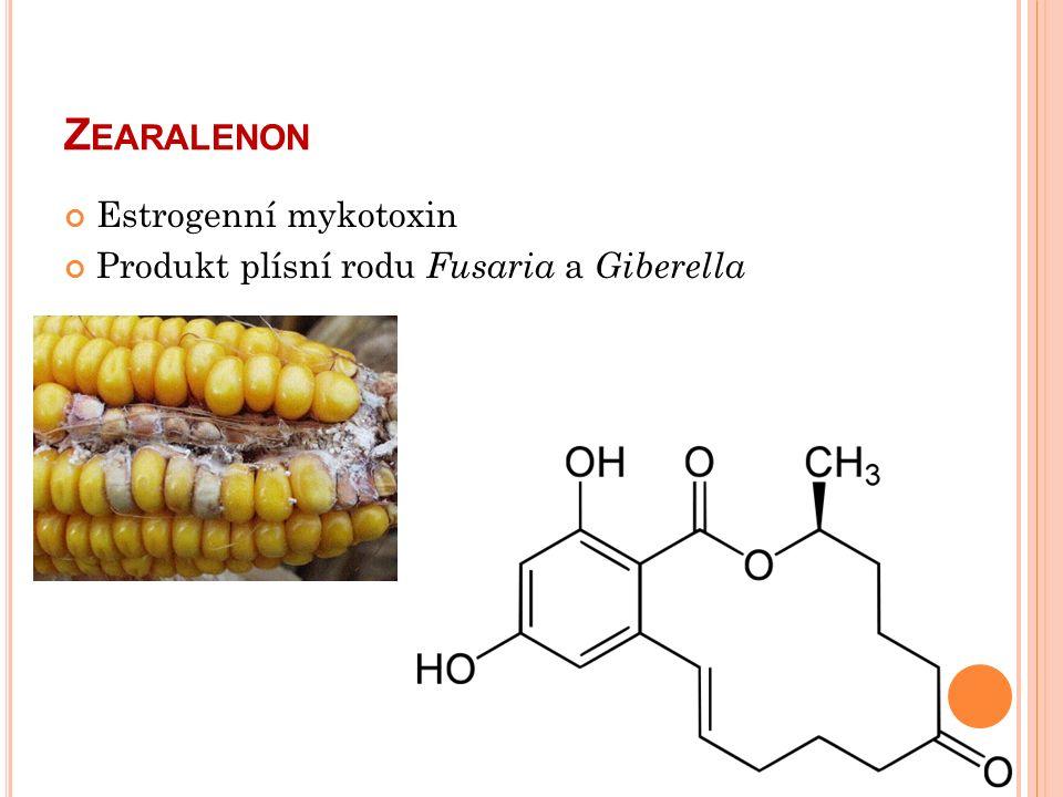 Z EARALENON Estrogenní mykotoxin Produkt plísní rodu Fusaria a Giberella