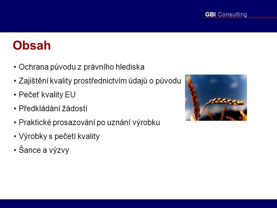 """GBI Consulting Předkládané podklady - dokumentace """"Jediný dokument je krátké shrnutí (max."""
