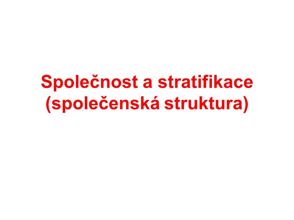 Společnost a stratifikace (společenská struktura)
