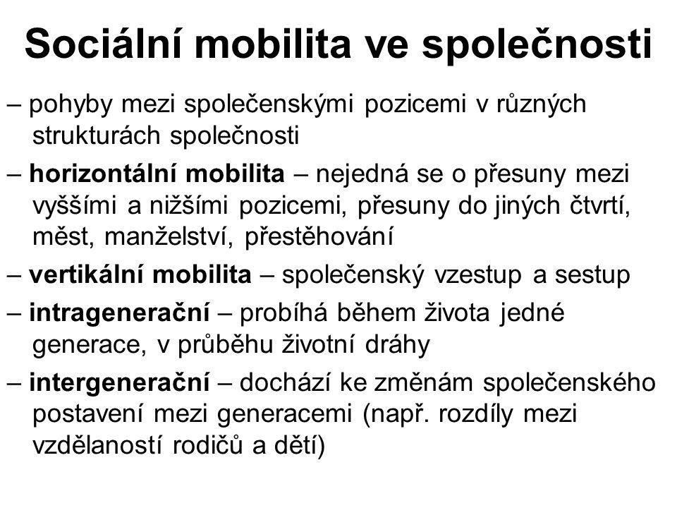 Sociální mobilita ve společnosti – pohyby mezi společenskými pozicemi v různých strukturách společnosti – horizontální mobilita – nejedná se o přesuny mezi vyššími a nižšími pozicemi, přesuny do jiných čtvrtí, měst, manželství, přestěhování – vertikální mobilita – společenský vzestup a sestup – intragenerační – probíhá během života jedné generace, v průběhu životní dráhy – intergenerační – dochází ke změnám společenského postavení mezi generacemi (např.