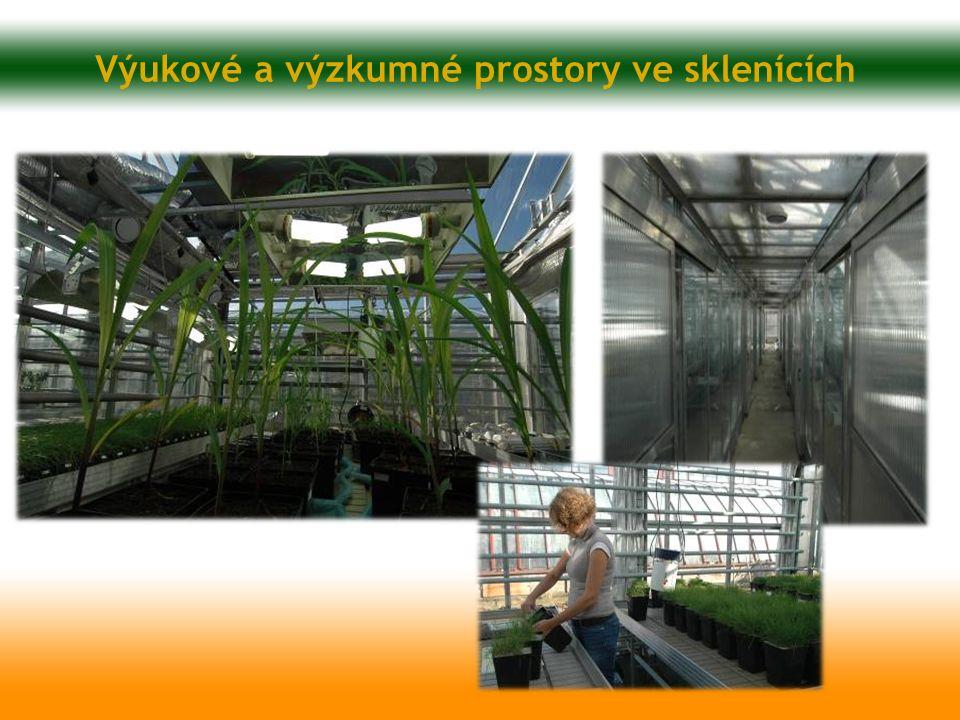 Výukové a výzkumné prostory ve sklenících