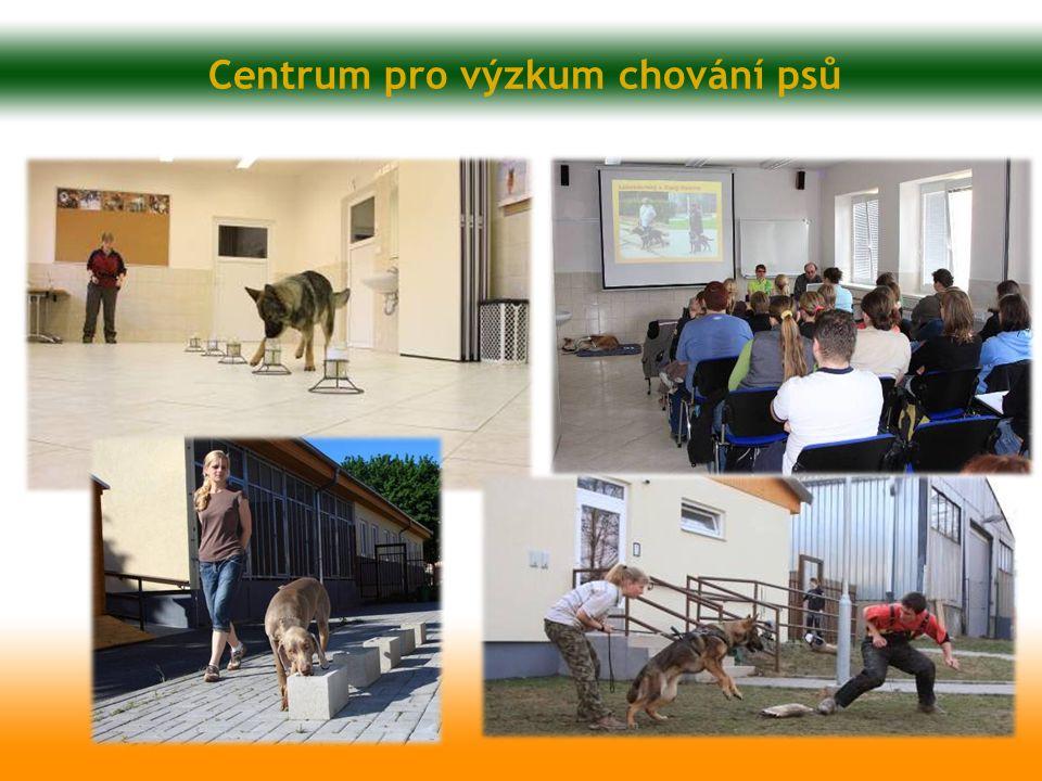 Centrum pro výzkum chování psů