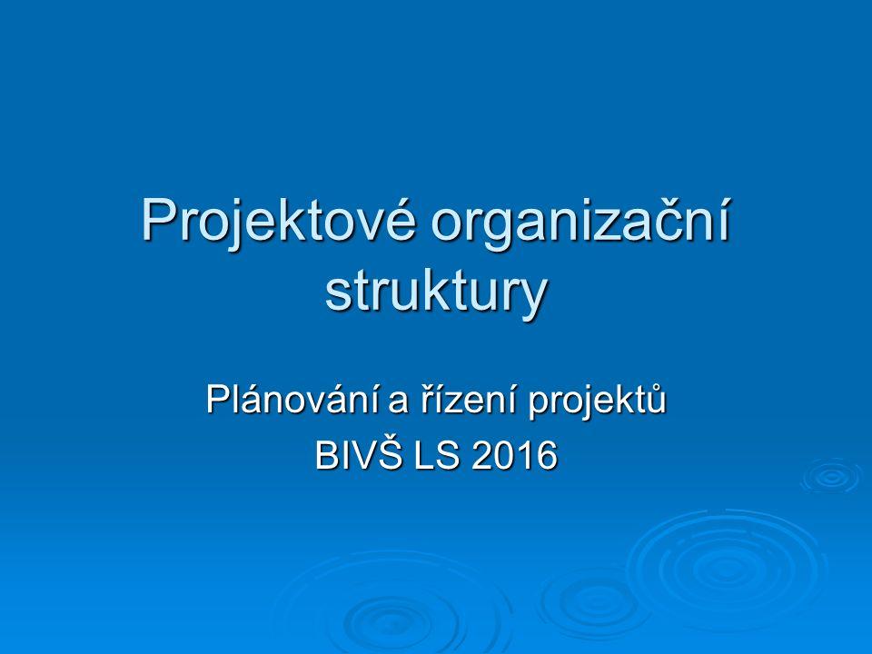 Projektové organizační struktury Plánování a řízení projektů BIVŠ LS 2016