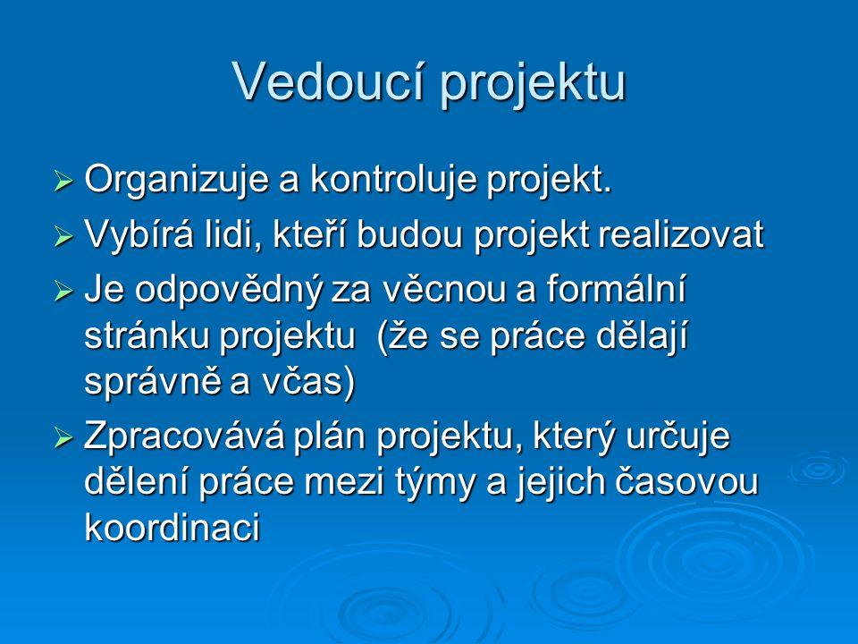Vedoucí projektu  Organizuje a kontroluje projekt.