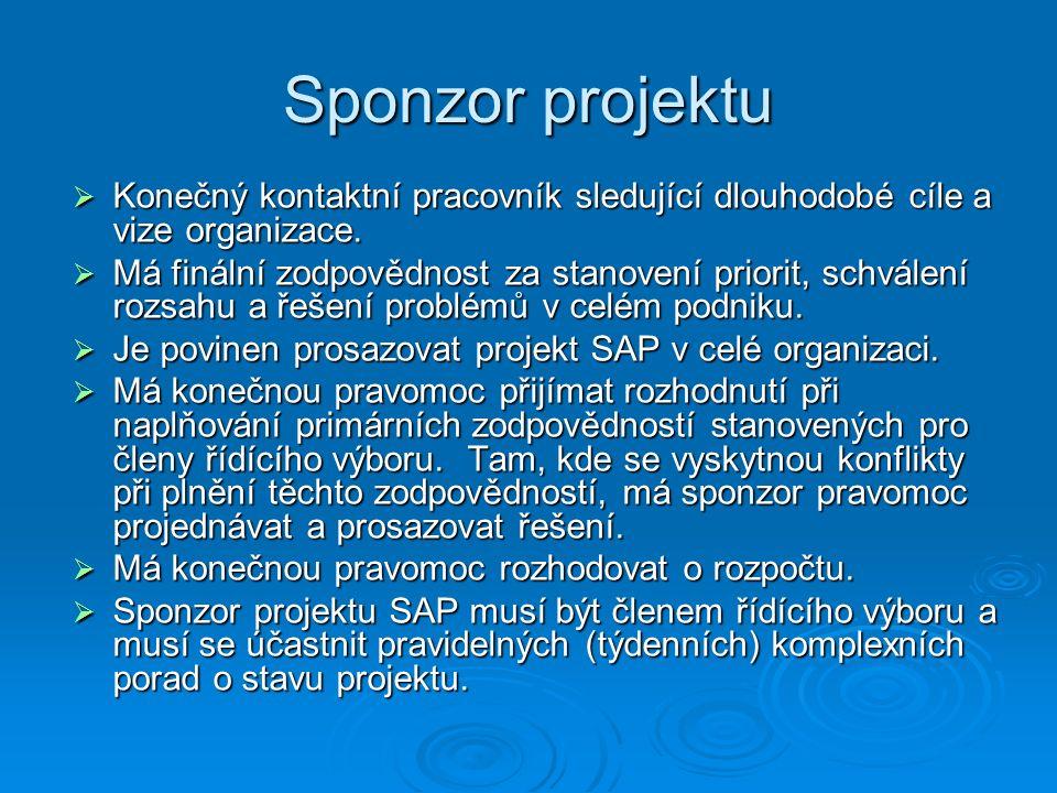 Sponzor projektu  Konečný kontaktní pracovník sledující dlouhodobé cíle a vize organizace.