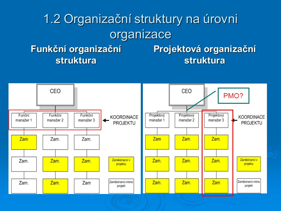 1.2 Organizační struktury na úrovni organizace Funkční organizační struktura Projektová organizační struktura PMO?
