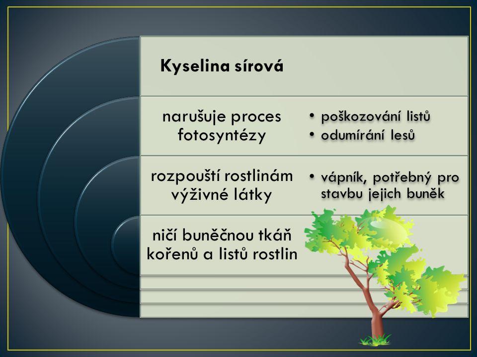 Kyselina sírová narušuje proces fotosyntézy rozpouští rostlinám výživné látky ničí buněčnou tkáň kořenů a listů rostlin poškozování listů odumírání lesů vápník, potřebný pro stavbu jejich buněk