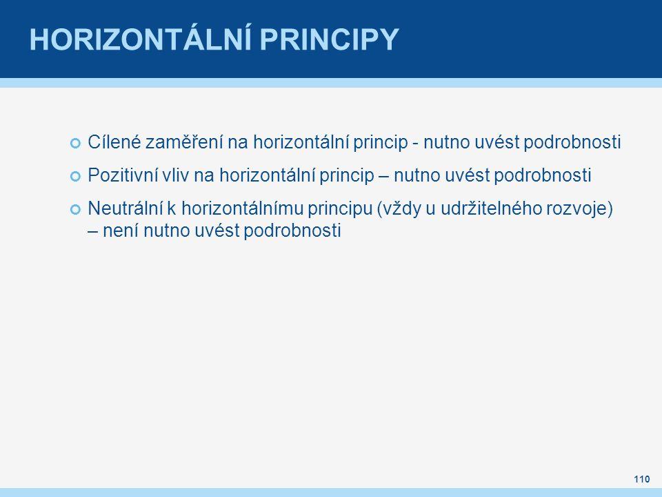 HORIZONTÁLNÍ PRINCIPY Cílené zaměření na horizontální princip - nutno uvést podrobnosti Pozitivní vliv na horizontální princip – nutno uvést podrobnosti Neutrální k horizontálnímu principu (vždy u udržitelného rozvoje) – není nutno uvést podrobnosti 110