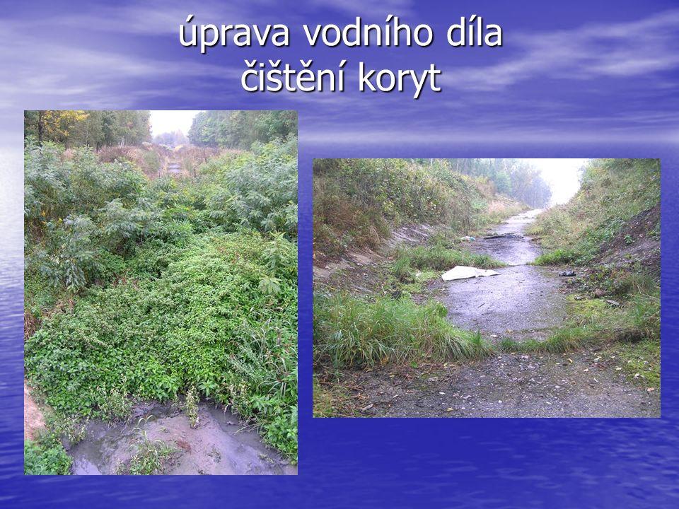 úprava vodního díla čištění koryt