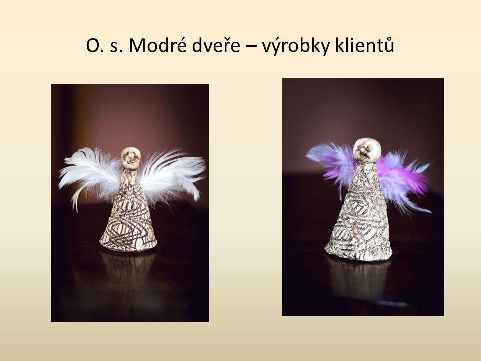 Jiří Peca Modrá křídla