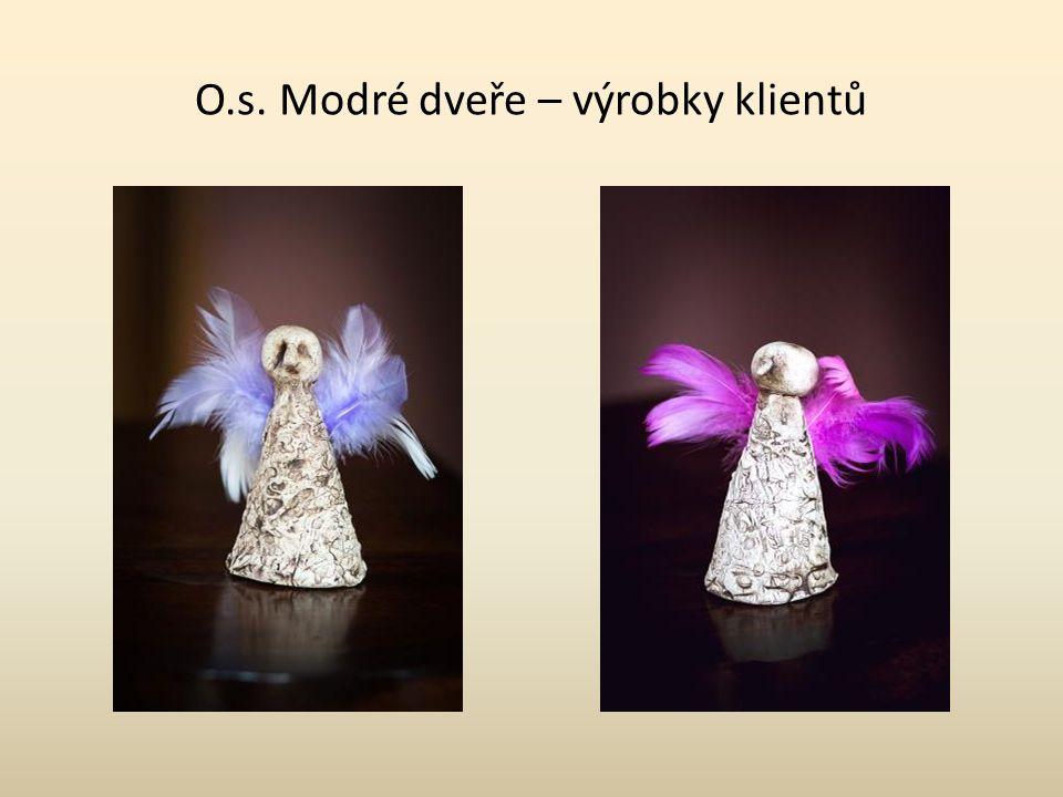 Tereza Fejtková Drátkovaný anděl