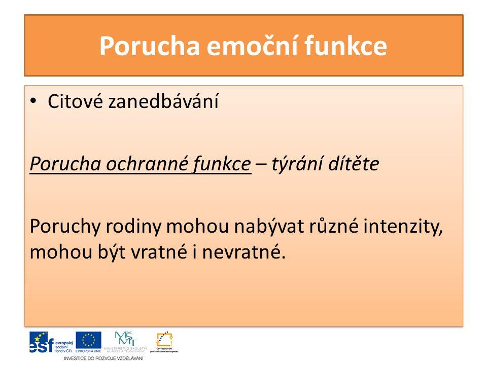 Porucha emoční funkce Citové zanedbávání Porucha ochranné funkce – týrání dítěte Poruchy rodiny mohou nabývat různé intenzity, mohou být vratné i nevratné.