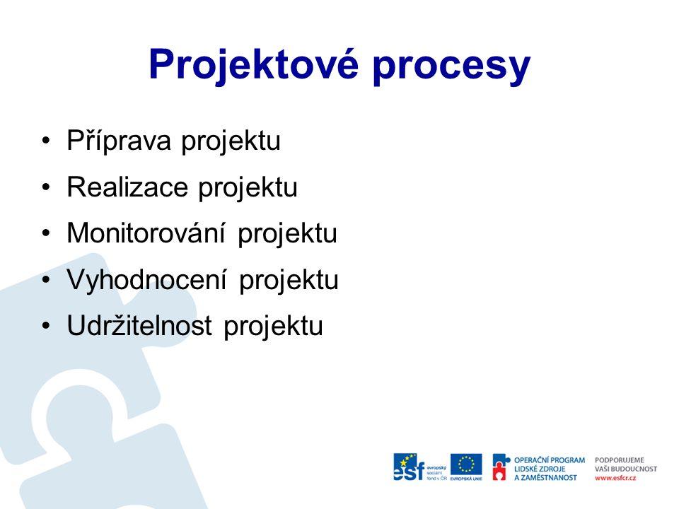 Odpovědnost za projekt Ředitel projektu Projektový manager Ekonom projektu