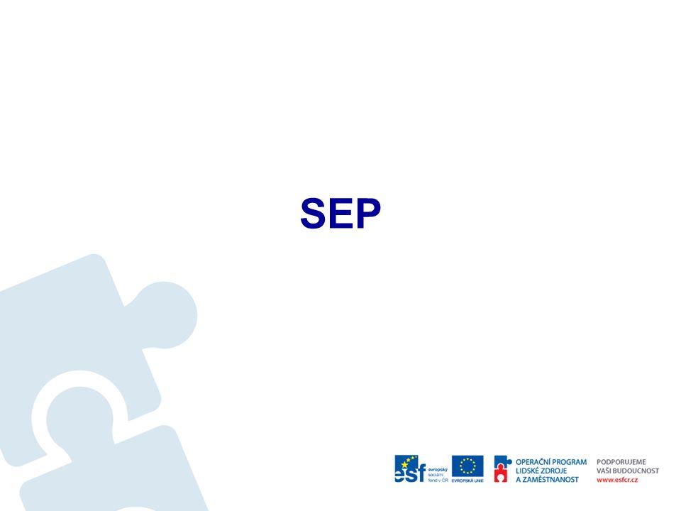 Manažerský informační systém Zdroj dat – EKIS, SEP, jiné IS Manažerské sestavy lze vytvořit podle individuální potřeby konkrétního manažera, popř.