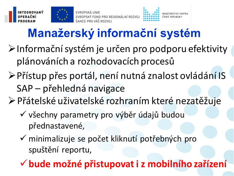 Manažerský informační systém