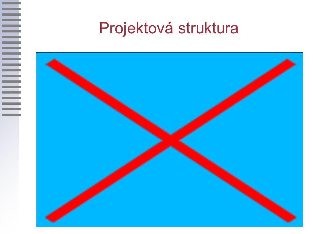Projektová struktura