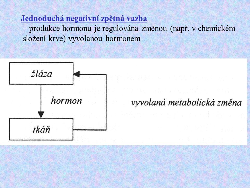 Jednoduchá negativní zpětná vazba – produkce hormonu je regulována změnou (např.